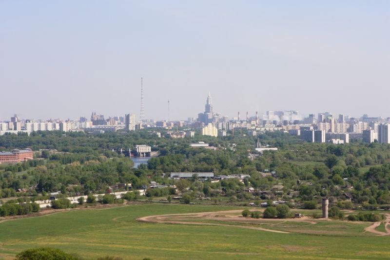 Птицы северо запада россии фото 5